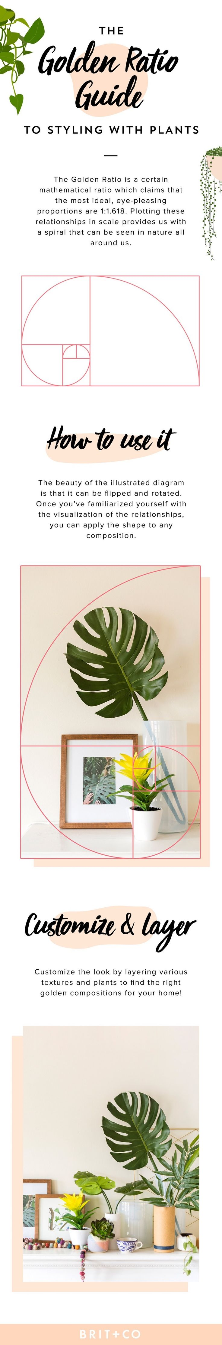 Silks pothos desk top plant in pot amp reviews wayfair - Pick These Artificial Plants For Fauxliage That Doesn T Look So Faux