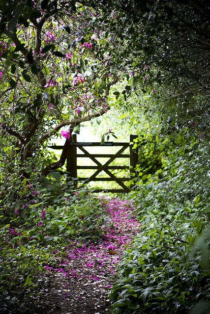Down the path, over the gate and out into the BIG,BOLD and WONDERFUL WORLD....go on, you know you want to go...
