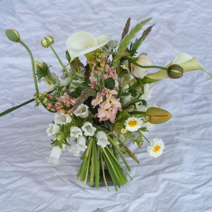 September flowers, spring, stocks, chrysanthemums, campanula, canterbury bells, arum lilies, tulips, poppies, ranunculus