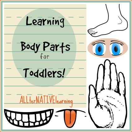 Learning Body Parts for Toddlers - ALLterNATIVElearning