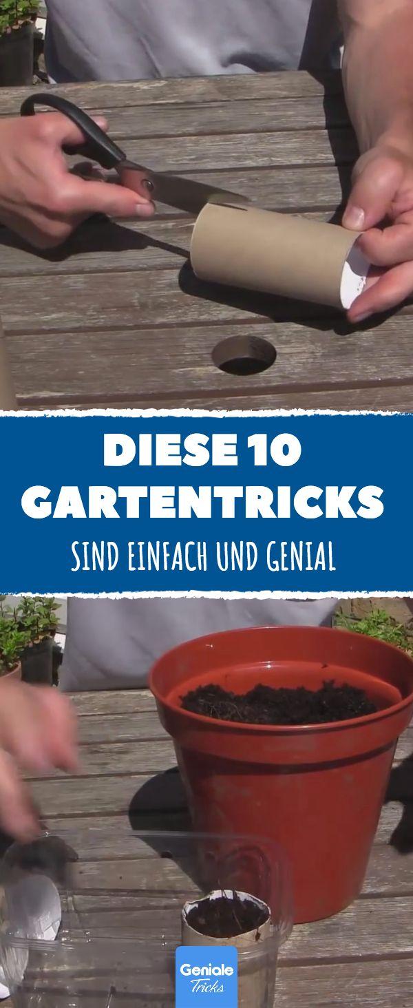 Diese 10 Gartentricks sind einfach und genial. Nr. 6 ist die perfekte Lösung gegen Blattläuse. – Vera Kestermann-Kuschke