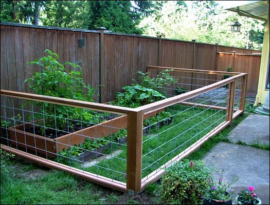 Garden Fences Big Dogs And Fencing On Pinterest