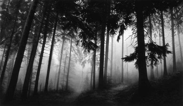 ROBERT LONGO - FAIRMOUNT FOREST - KUNZT.GALLERY http://www.widewalls.ch/artwork/robert-longo/fairmount-forest-2/ #Print