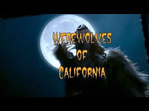 Werewolves in California (Real Werewolf Encounter or Real Dogman Encounter) - YouTube