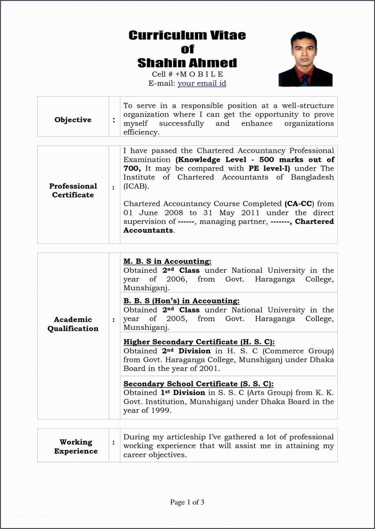 coolprofessional curriculum vitae format template