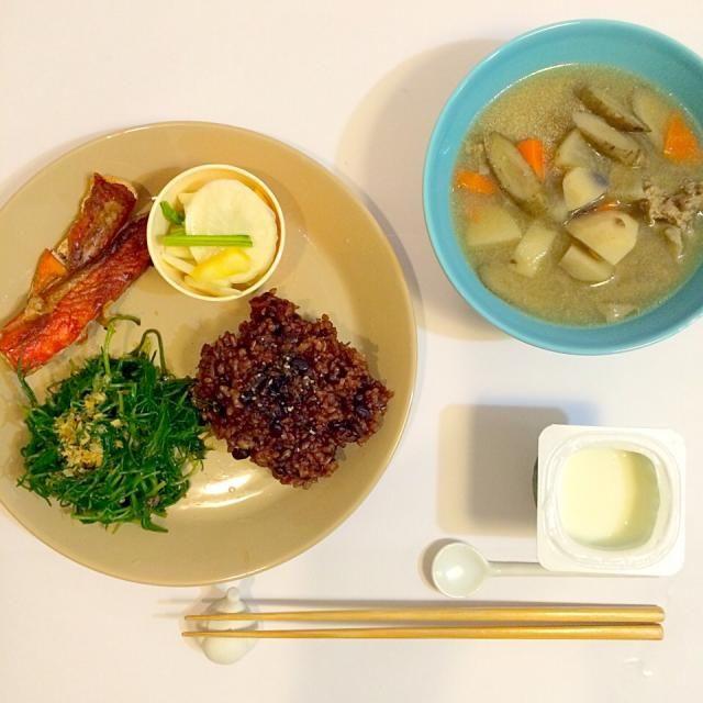 いつも通りの適当作り置きで簡単夕ごはん。 - 62件のもぐもぐ - 夕ごはん。けんちん汁、鮭ハラス、かぶの漬け物、雑穀米、最近はまっているおかひじきのおひたし、ヨーグルト。 by yukko7740