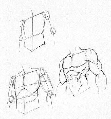 Ciało kobiece, męskie oraz postać w ruchu - - kurs manga- jak narysować? - bloog.pl
