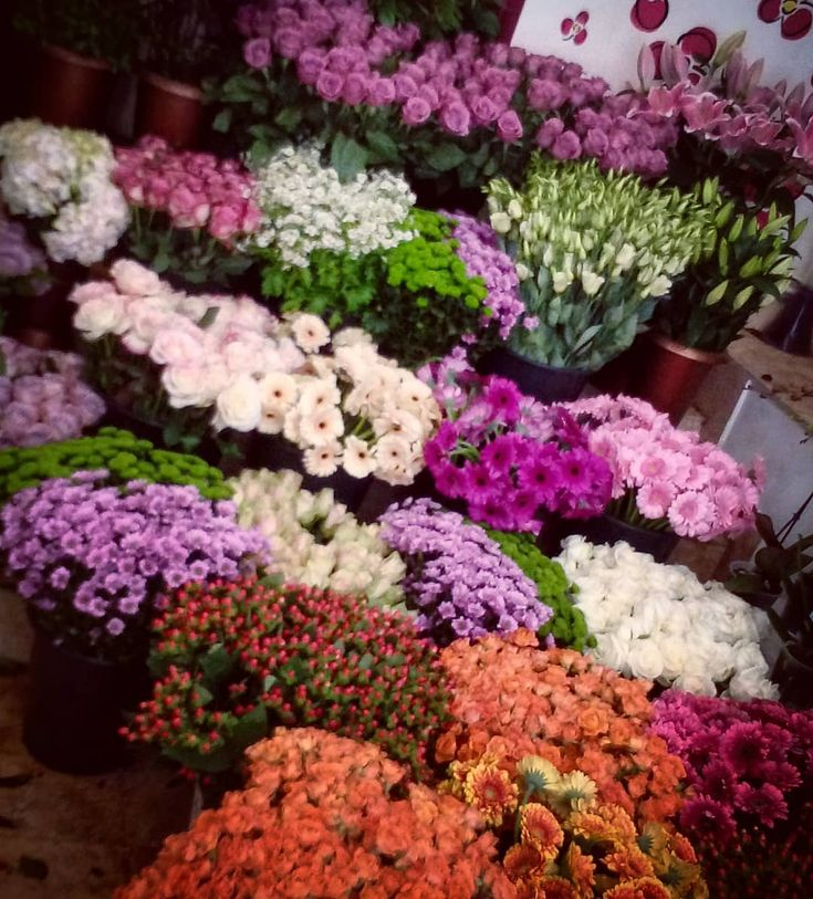 """2 aprecieri, 1 comentarii - Floraria Dorothy's (@florariadorothys) pe Instagram: """"Colors for the weekend.. #flowershop #colors #for #weekend #fun #cluj #clujnapoca #clujcenter…"""""""