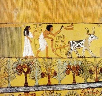 Scena di aratura del terreno e semina. Nella parte inferiore sono state raffigurate anche alcune palme ed altre piante identificate come sicomori. Particolare delle pitture murali dalla tomba di Sennedjem, Deir el-Medina (Egitto), 1500-1050 a.C.