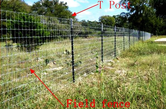 Coastal Farm Field Fence Galvanized Farm Field Wire Mesh