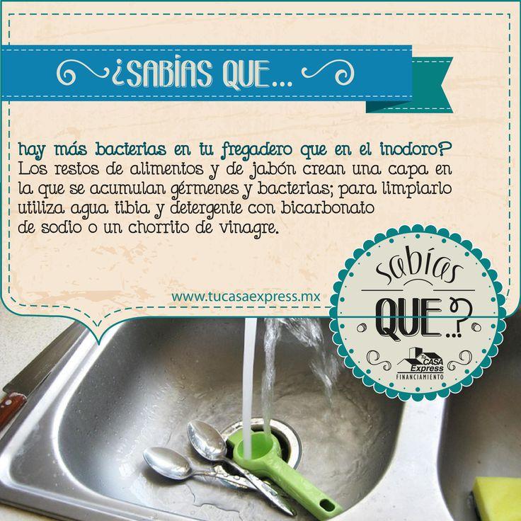 ¿Sabías que hay más bacterias en tu fregadero que en el inodoro?