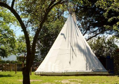 Stay in a teepee at Wacky Stays, Kaikoura. http://www.aatravel.co.nz/main/listing.php?listingId=253117