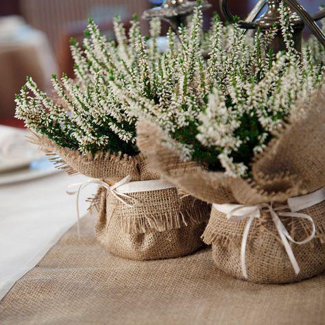 Decoración de la boda de arpillera - plantas como una pieza central, un toque de acabado para plantas de macetas, armonizar tus decoraciones de boda envolviendo las plantas en este abrigo arpillera adornado con satén. Esta envoltura de la planta puede armonizar tus centros de mesa de