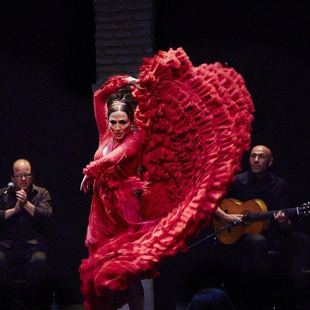 museo-baile-flamenco.jpg (640×640)