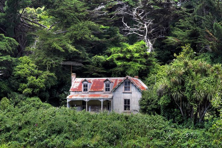gasoline-station:  This house has been abandoned since the owner died a few years ago. Wellington, New Zealand byBrian nz