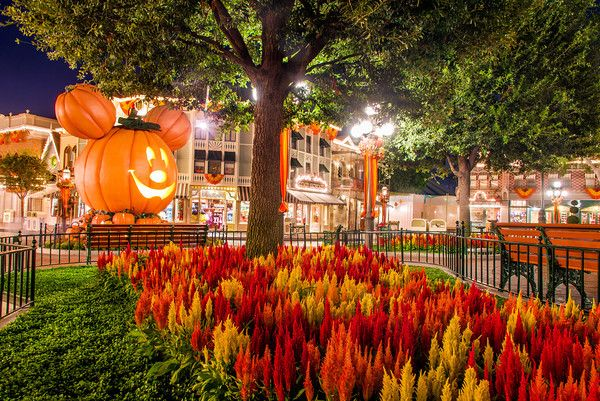 Great resource for a Halloween trip to Disneyland!