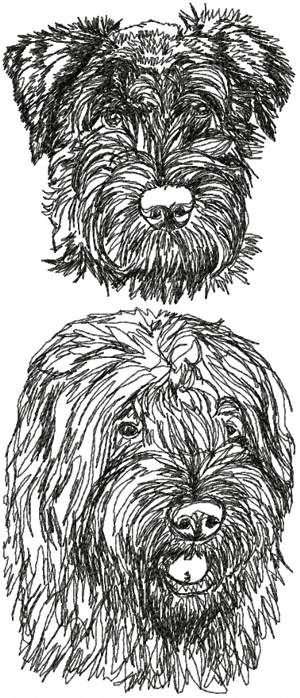 Advanced Embroidery Designs - Bouvier des Flandres Set