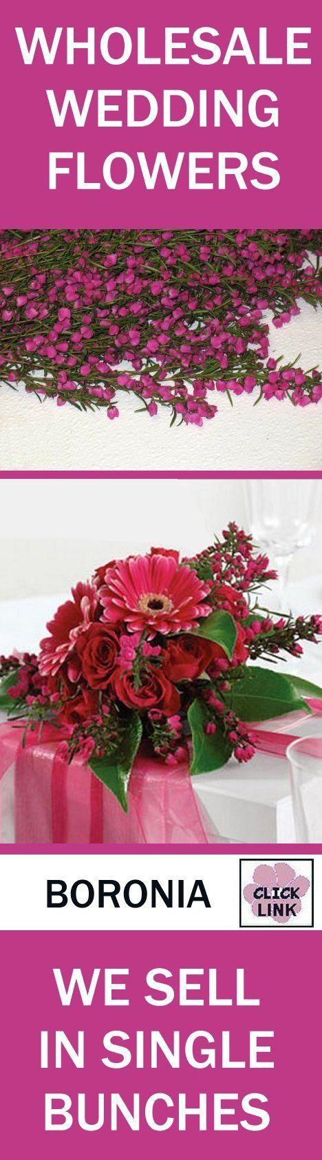 64 best Boronia Heather images on Pinterest | Bridal bouquets ...