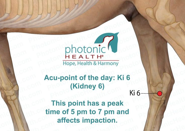 17 Best Images About Photonic Health Acu Points On