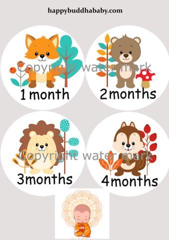 Milestone Cards for Baby