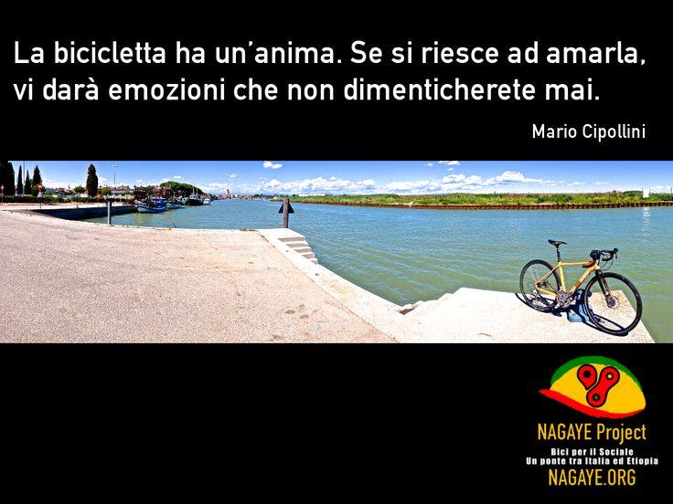 La bicicletta ha un'anima. Se si riesce ad amarla, vi darà emozioni che non dimenticherete mai. Mario Cipollini