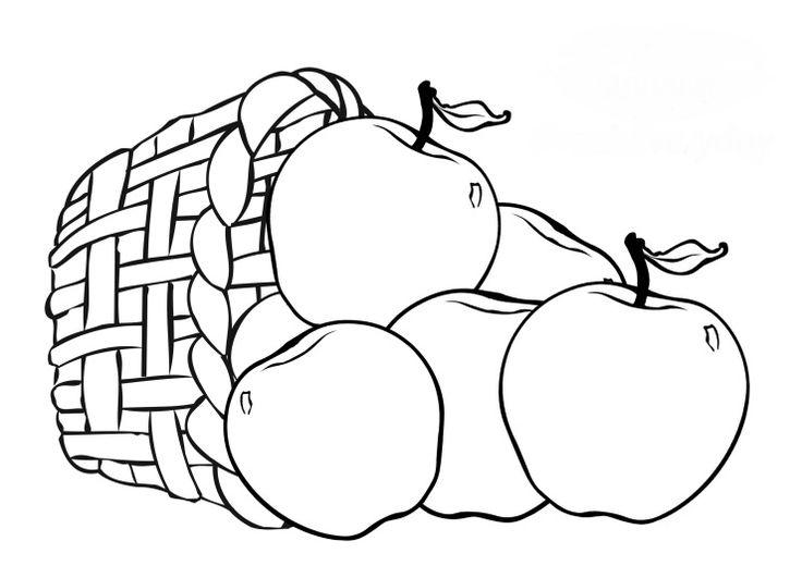 Gambar Mewarnai Untuk Anak Anak Buku Mewarnai Sketsa Warna