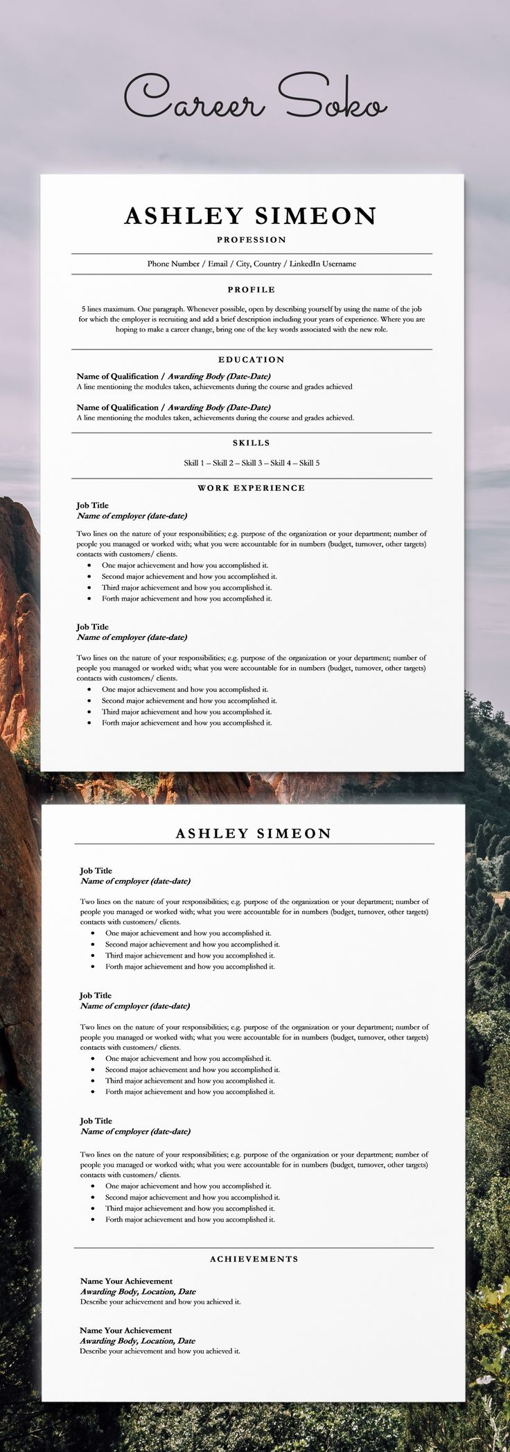 Resume Template Word CV Template Curriculum Vitae2 Page