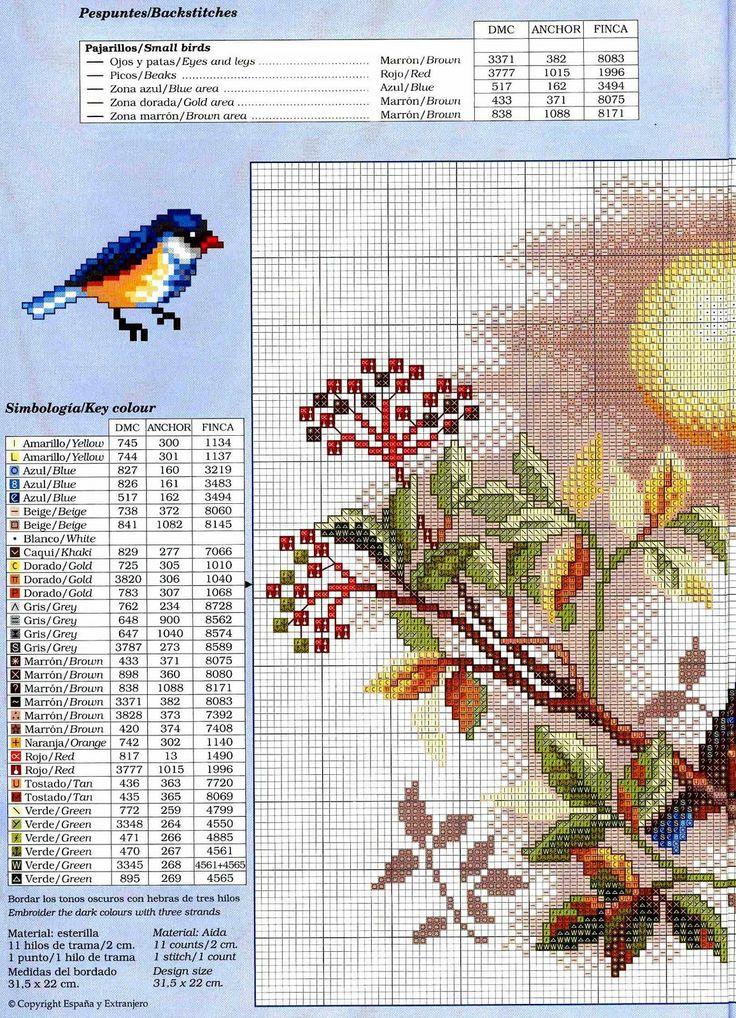 keresztszemes madarak a fán 1