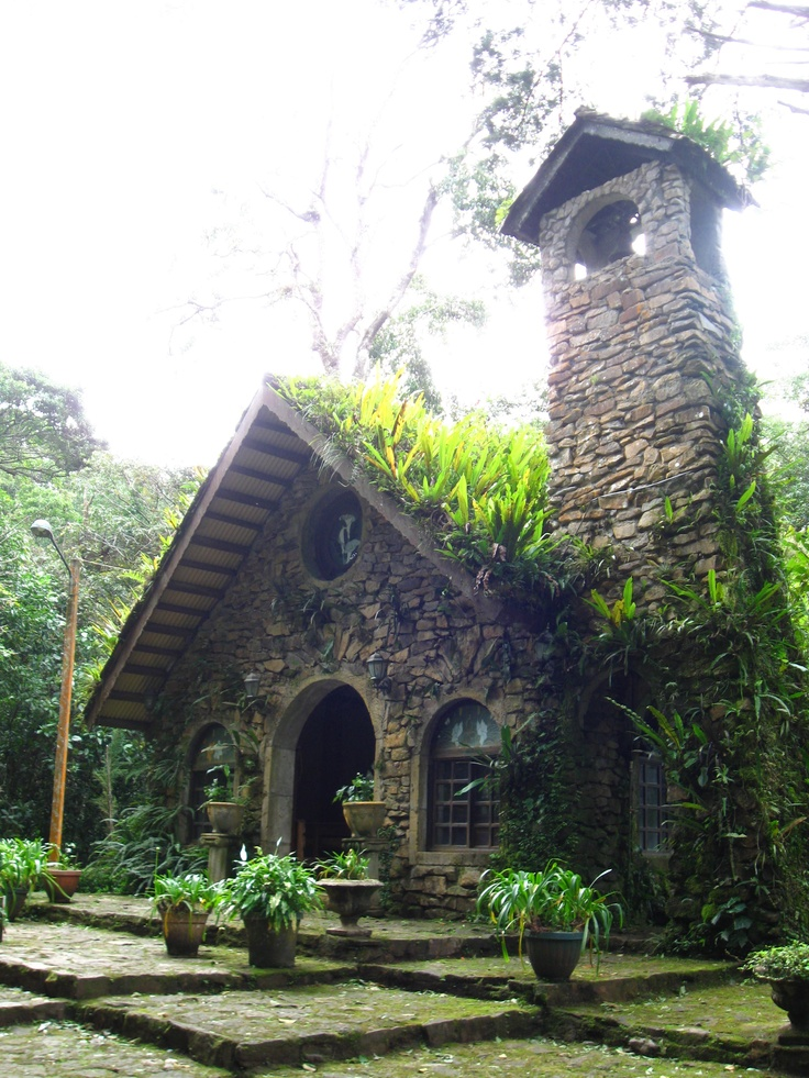 17 best images about grounds of selva negra on pinterest
