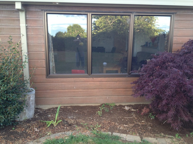 This is the before photo of the curved window garden. It shows the set of very low windows of the family room. There is a lovely rural outlook from the family room, and it gets full sun all morning, which is great in winter.