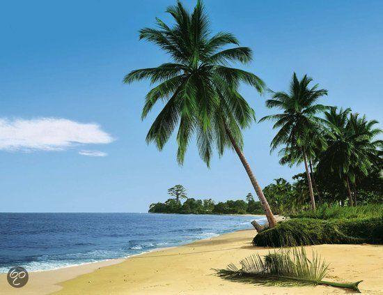 Sunnydecor Fotobehang strand Zuidzee 4-delig
