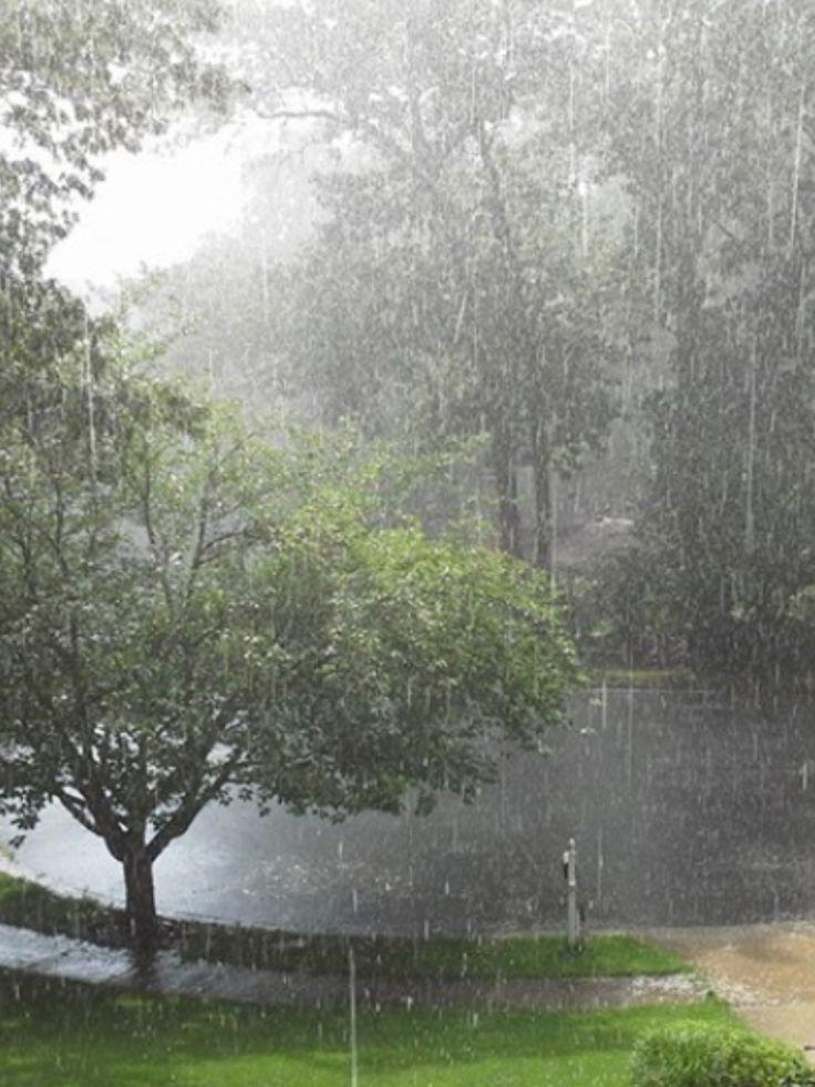 I love the rain                                                                                                                                                                                 More