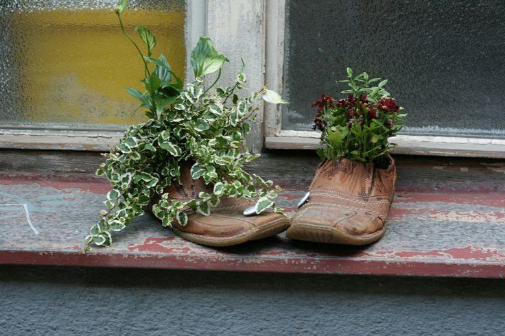 Guerilla, refreshing gardening