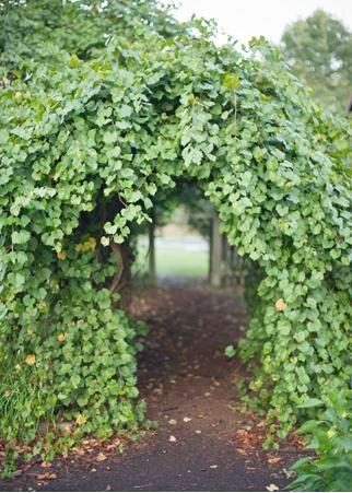 83 best Arbors Gates images on Pinterest Garden gate Garden