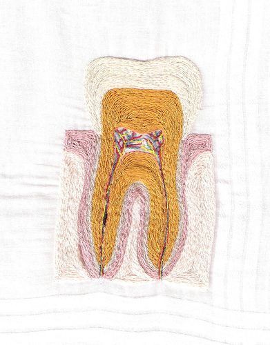 Anatomical Molar/Tooth hand embroidery (front) 20070708