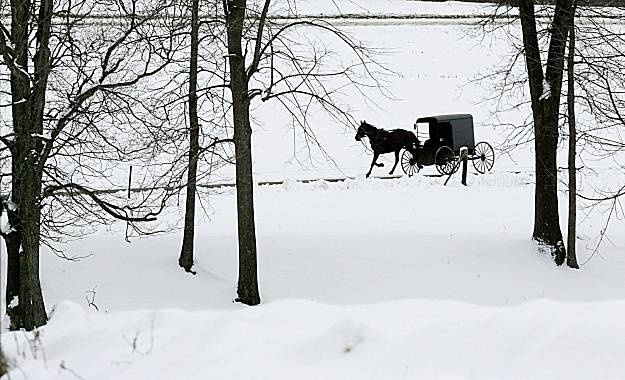 An Amish woman drives her buggy along Crawford Road near White Hall, Pa.