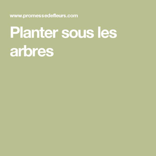 Planter sous les arbres