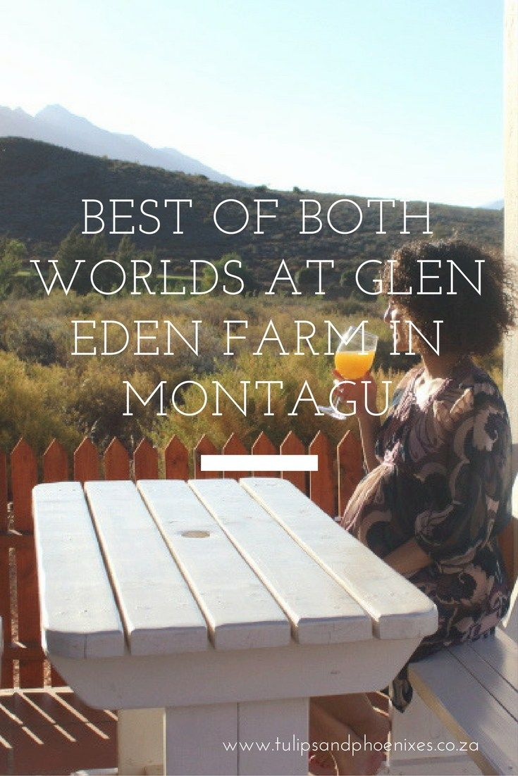 Want to be surrounded by mountains but also a short drive away from the local town's attractions? Then Glen Eden Farm is the perfect place for you! Situated just off Route 62 and yet a 10 minute drive from the town of Montagu - it's got the best of both worlds. Click to read more about this pet friendly Montagu accommodation!