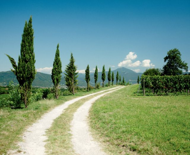 Franciacorta must forge fresh path in UK