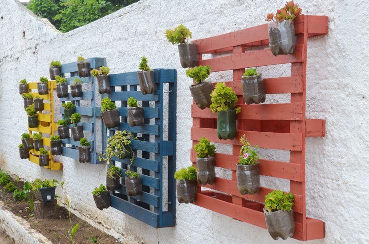 Jardim-vertical-desenvolvido-na-Escola-Angelina-Luciano-de-Macedo.jpg (2362×1564)