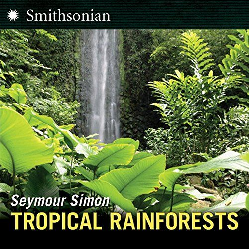 Within the confines of tropical rainforests are orchids, bananas, coffee plants and hundreds of rare and endangered animal species. These biomes, like other ecosystems on Earth, include an assortment of tiny microorganisms and bacteria. From the forest floor to towering canopies, plants and animals make themselves at home in all parts of the rainforest.