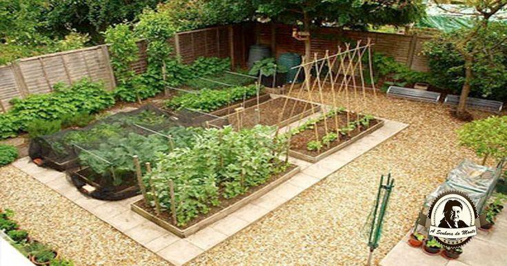 Erros comuns no jardim comestível