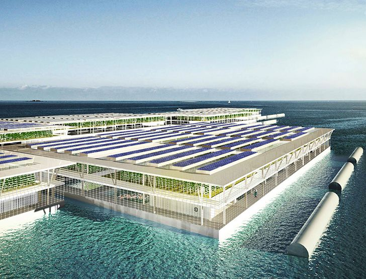 Could solar-powered floating farms provide enough food for the entire world?