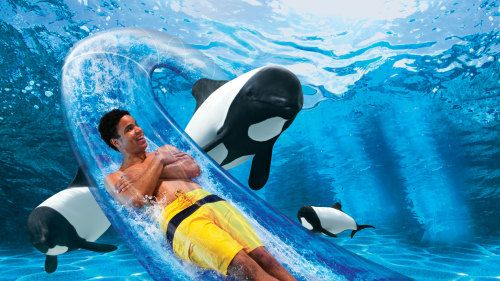 SeaWorld Orlando Tickets - Orlando | Expedia