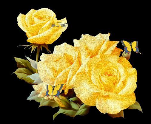sarı güller gifleri ile ilgili görsel sonucu