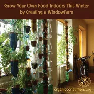 Indoor food