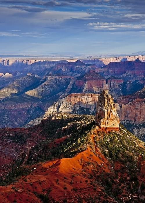 Try a visit to the North Rim of the Grand Canyon for a different perspective (Image Courtesy B. Candleforth)