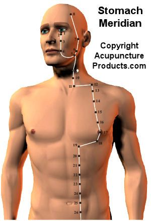Acupuncture Stomach Meridian