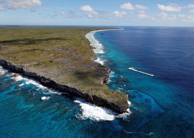 Henderson Island, Pacific Ocean