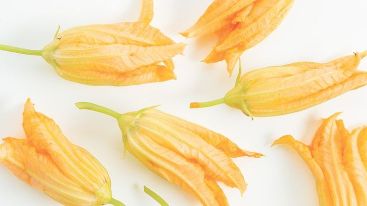 How to Make Ricotta-Stuffed Squash Blossoms, with a Helpful GIF | Bon Appetit